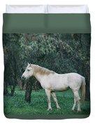 White Stallion In The Woods  Duvet Cover