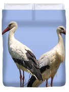 White Storks Duvet Cover by Wim Lanclus