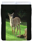 White-tail Fawn Duvet Cover