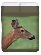 White Tail. Duvet Cover