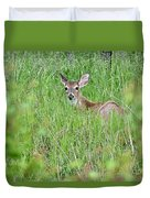 White-tailed Deer Bedded Down In Tall Grass Duvet Cover