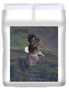 White-tailed Eagle Banks Duvet Cover
