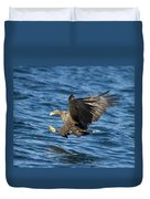 White-tailed Eagle Taking Fish Duvet Cover