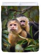 White-throated Capuchin Monkeys Cebus Duvet Cover