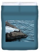 White-throated Dipper Nr 3 Duvet Cover