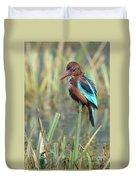 White-throated Kingfisher 13 Duvet Cover