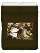 White Throated Sparrow On Branch New Jersey Duvet Cover