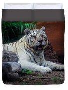 White Tiger Gladys Porter Zoo Texas Duvet Cover