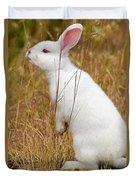 White Wabbit Duvet Cover