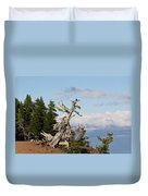 Whitebark Pine At Crater Lake's Rim - Oregon Duvet Cover by Christine Till