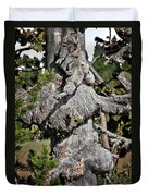 Whitebark Pine Tree - Iconic Endangered Keystone Species Duvet Cover by Christine Till