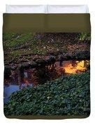 Whiteman College Reflection Duvet Cover