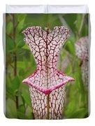 Whitetop Pitcherplant Duvet Cover