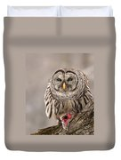 Wild Barred Owl With Prey Duvet Cover