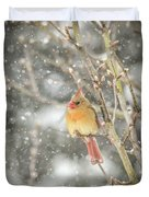 Wild Birds Of Winter - Female Cardinal In The Snow Duvet Cover