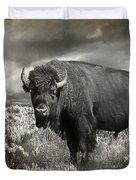 Wild Buffalo In Yellowstone Duvet Cover