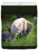 Wild Cats In Hialeah Duvet Cover