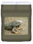 Wild Colorful Iguanas In The Outdoors With Spines On His Back Duvet Cover