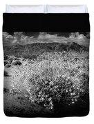 Wild Desert Flowers Blooming In Black And White In The Anza-borrego Desert State Park Duvet Cover