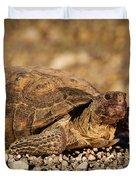 Wild Desert Tortoise Saguaro National Park Duvet Cover by Steve Gadomski
