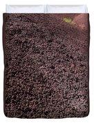 Wild Flowers John Day Fossil Beds  Duvet Cover