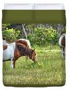Wild Horses Of Assateague 5 Duvet Cover
