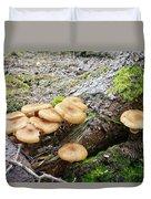 Wild Mushrooms 2 Duvet Cover