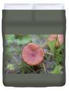 Wild Mushrooms 3 Duvet Cover