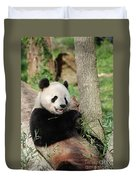 Wild Panda Bear Eating Bamboo Shoots While Leaning Against A Tre Duvet Cover