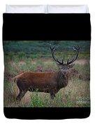 Wild Red Deer Stag Duvet Cover