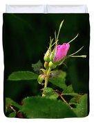 Wild Rosebud Duvet Cover