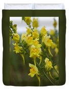 Wild Toadflax Duvet Cover