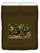 Wild Turkey In Tennessee Duvet Cover