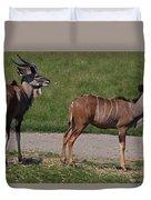 Wildebeest I Duvet Cover