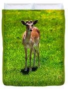 Wildlife 2 Duvet Cover