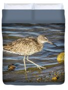 Willet Feeding In The Marsh 1 Duvet Cover