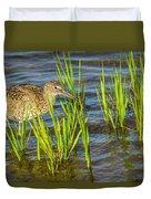 Willet Feeding In The Marsh 2 Duvet Cover