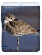 Willet Resting At The Beach Duvet Cover