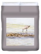 Willet Set 3 Of 4 By Darrell Hutto Duvet Cover