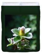 Willow Flower Duvet Cover