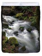 Wilson Creek #15 Duvet Cover