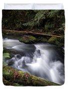 Wilson Creek #18 With Added Cedar Waxwing Duvet Cover