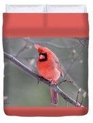 Windblown Cardinal Duvet Cover