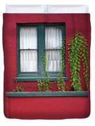 Window And Vines Duvet Cover
