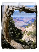 Window To The Past 21 - Grand Canyon Duvet Cover