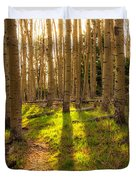 Windsor Trail At Dusk - Santa Fe National Forest New Mexico Duvet Cover