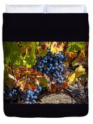 Wine Grapes Napa Valley Duvet Cover