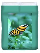 Wing Wonders Duvet Cover