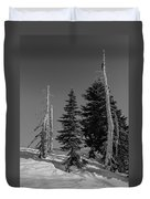 Winter Alpine Trees, Mount Rainier National Park, Washington, 2016 Duvet Cover