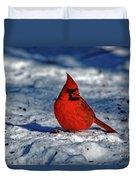 Winter Beauty Duvet Cover